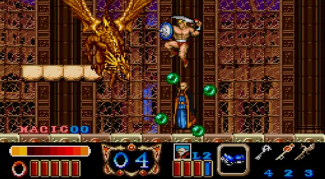Magic Sword - SNES trucchi e codici videogame
