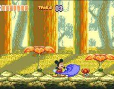 World of Illusion - Mega Drive password videogame