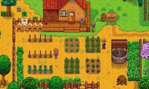 Stardew Valley Switch videogame
